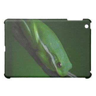 Green Tree Frog iPad Case
