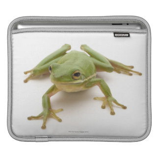 Green Tree Frog Sleeves For iPads