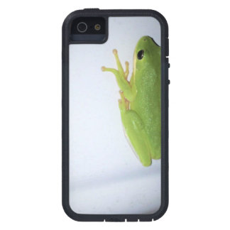 Green Tree Frog iPhone 5 Covers