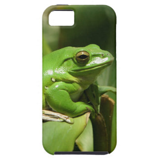 Green Tree Frog iPhone Cover iPhone 5 Cases