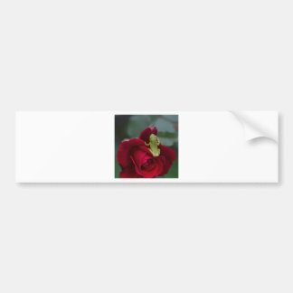 Green Tree Frog on Red Rose Bumper Sticker