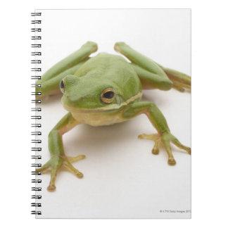 Green Tree Frog Spiral Notebook