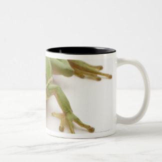 Green Tree Frog Two-Tone Mug