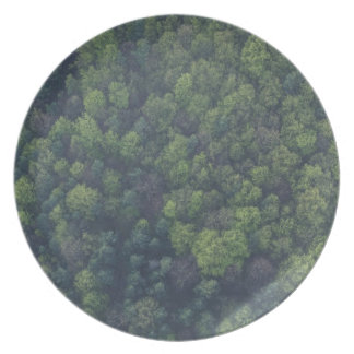 Green Trees Plate