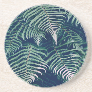 Green Tropical Fern Leaves Natural Pattern Coaster