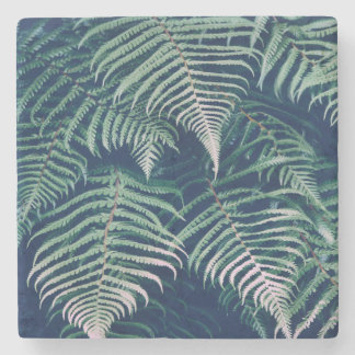 Green Tropical Fern Leaves Natural Pattern Stone Coaster