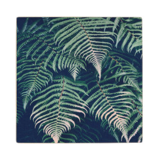 Green Tropical Fern Leaves Natural Pattern Wood Coaster