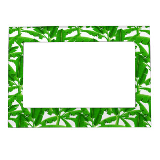 Green tropical palm trees magnetic picture frame
