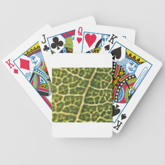 green veins or scales bicycle playing cards
