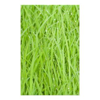 Green wet grass design stationery