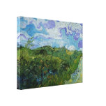 Green Wheat Fields by Vincent van Gogh Stretched Canvas Print