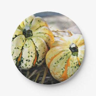 Green, White & Orange Pumpkin Paper Plate