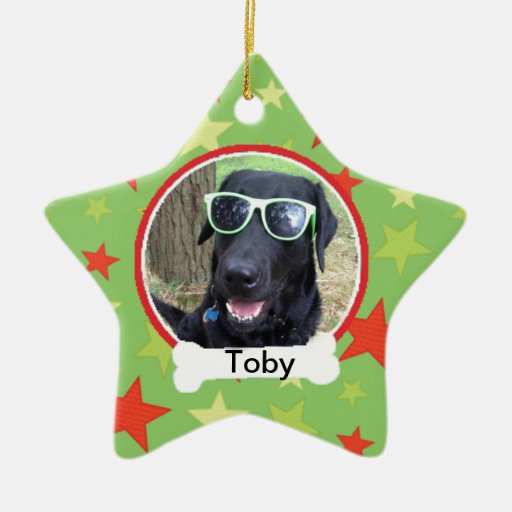 Green With Stars Photo Pet Ornament