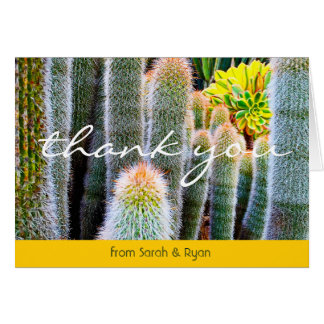 Green yellow cacti close-up photo thank you card