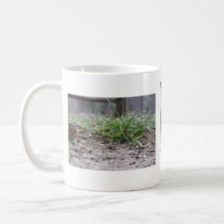 Greener grass mug