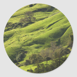 Greener Pastures in Big Sur CA Classic Round Sticker