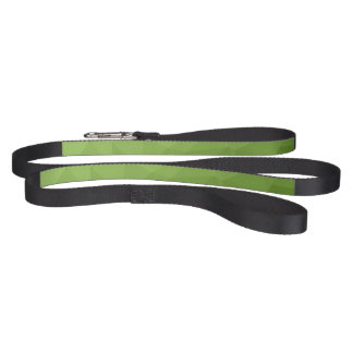 Greenery ombre gradient geometric mesh pet leash