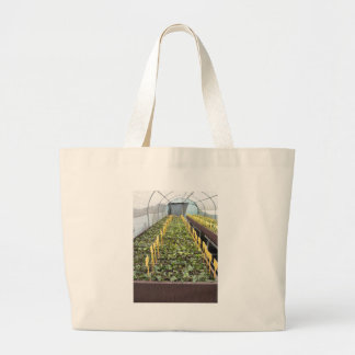 Greenhouse cultivation of Camellia japonica flower Large Tote Bag