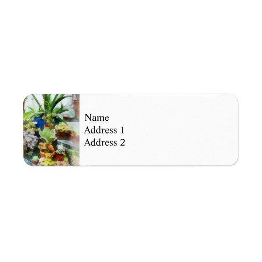 Greenhouse With Cactus Return Address Label