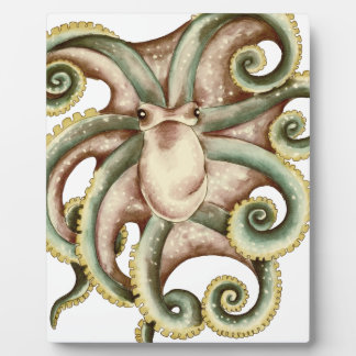 Greenish octopus plaque