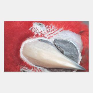 Greenwing macaw rectangular sticker
