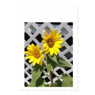 Greeting card 13 cm x 18 cm invitation card