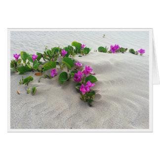 Greeting Card, Beach Morning Glory Card