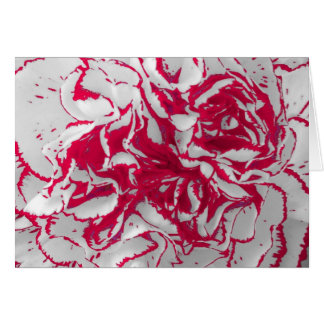 Greeting Card - Carnation in Red & White