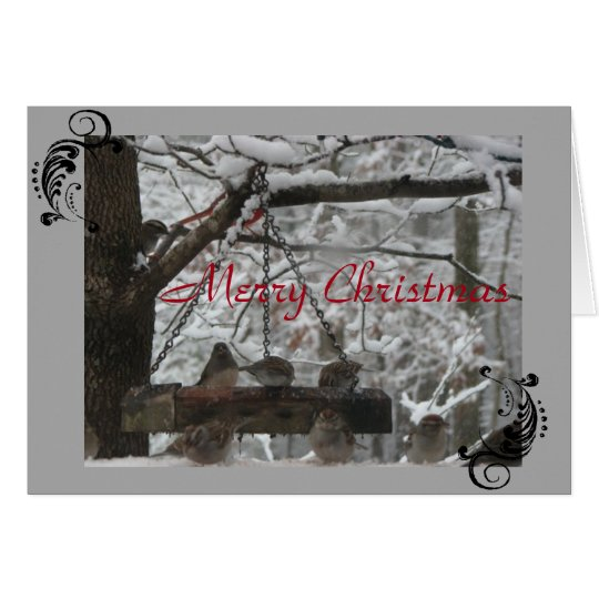 Greeting Card - Christmas - FeatheredFriends