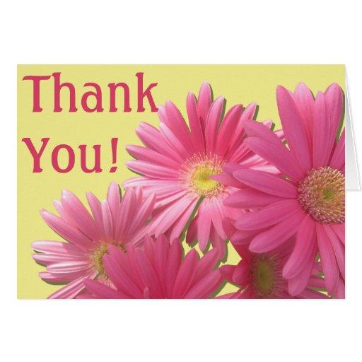 Greeting Card - Dark Pink Gerbera Daisies