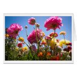 Greeting Card - Flowery Skies