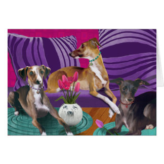 Greeting card, Italian Greyhounds Card