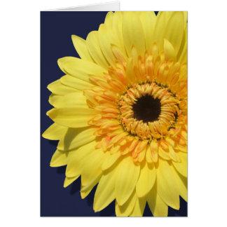 Greeting Card - Lemorange Lollipop Daisy