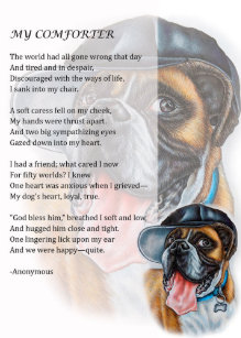 A Day In The Life Of A Dog Poem