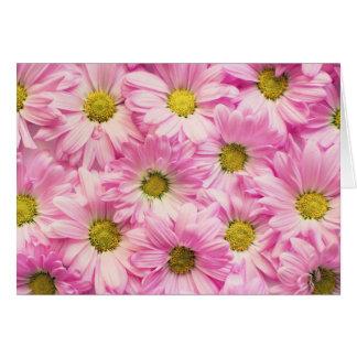 Greeting Card - Pink Gerbera Daisies