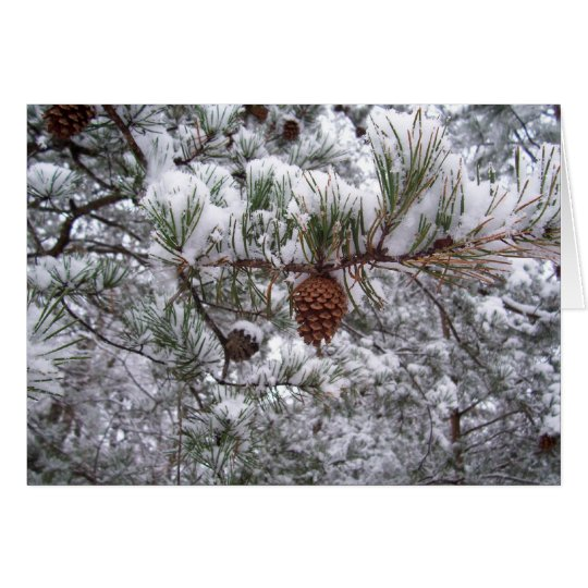 Greeting Card - Winter Pine