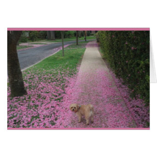 Greeting Card with Cherry Blossom with Cute Doggy