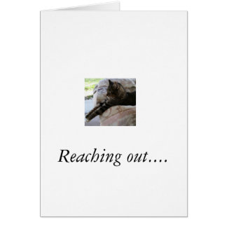 Greeting card with photo of cat that is stretched