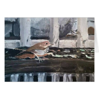 """Greeting Cards """"Humboldt Sparrow"""" by Amber Larsen"""