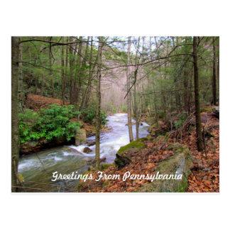 Greeting From Pennsylvania Postcard