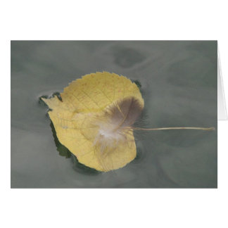 Greeting map feather on yellow sheet in the water, greeting card