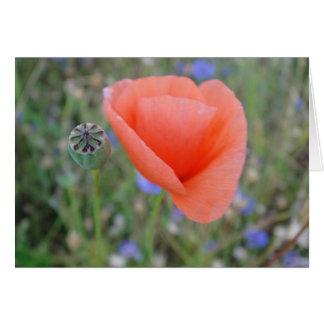 Greeting map poppy flower in heart form in blank