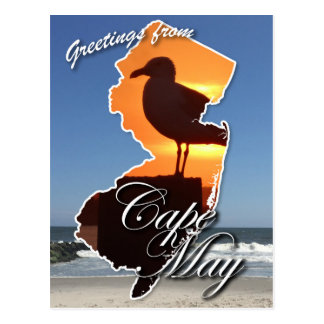 Greetings from Cape May Postcard