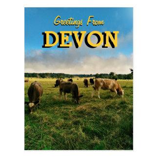 Greetings From Devon Postcard