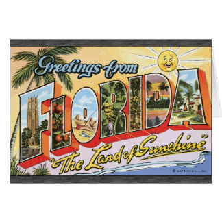Greetings From Florida The Land Of Sunshine Vin Greeting Card