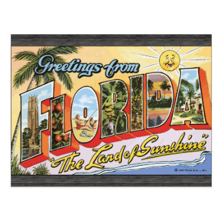 "Greetings From Florida ""The Land Of Sunshine"", Vin Postcard"