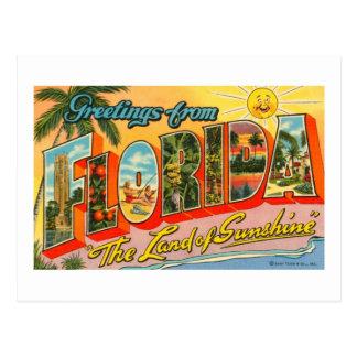 Greetings From Florida Vintage Postcard