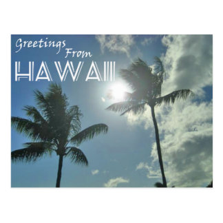 Greetings From Hawaii - Palm Trees Postcard