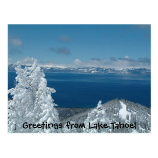 Greetings from Lake Tahoe! Postcard