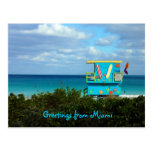 Greetings From Miami Post Card